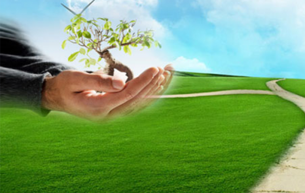 ISO 14001:2015 Çevre Yönetim Sistemi